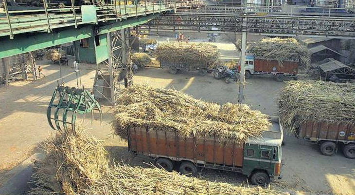 India's crop is likely to shrink this season, but it's not going to be enough to get the market back in balance.