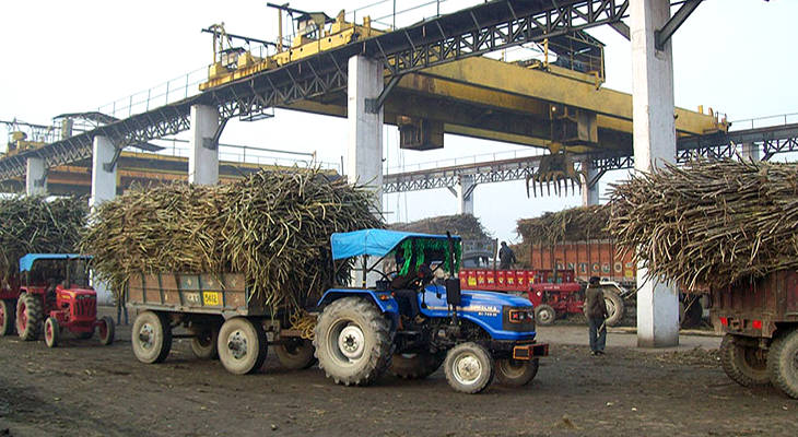 India's role in the sugar market has gone from swing player to market cap.