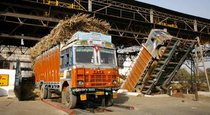 Maharashtra's Sugar Conundrum